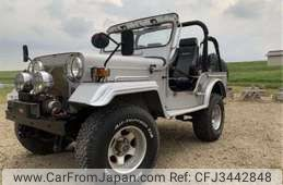 Chrysler Jeep Others 1993