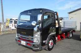 Isuzu Elf Truck 2010