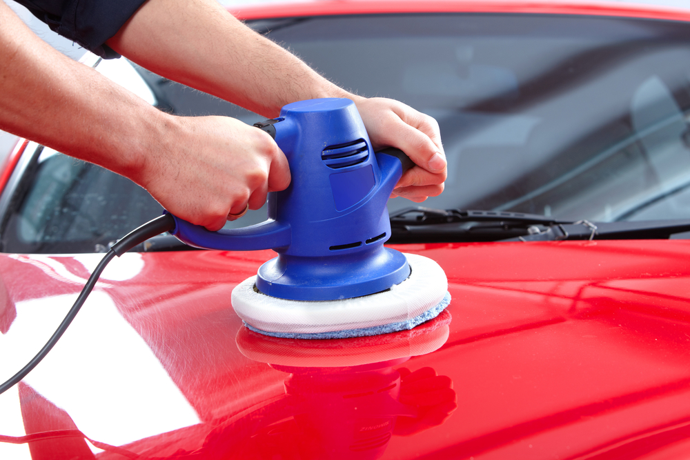 How to Recover the Car Paint Damage from Bird Droppings