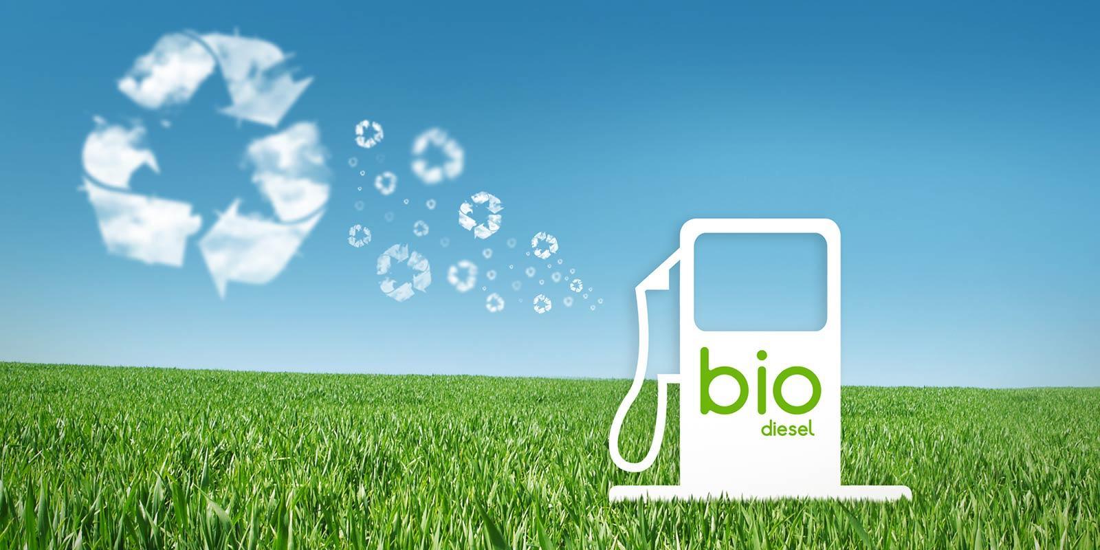 pros  cons  biodiesel energy car  japan